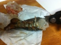 LobsterRisottoPrep6